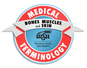 3_Medical Terminology_Bones, Muscles, and Skin_preview