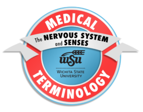 5_Medical Terminology_The Nervous System and Senses