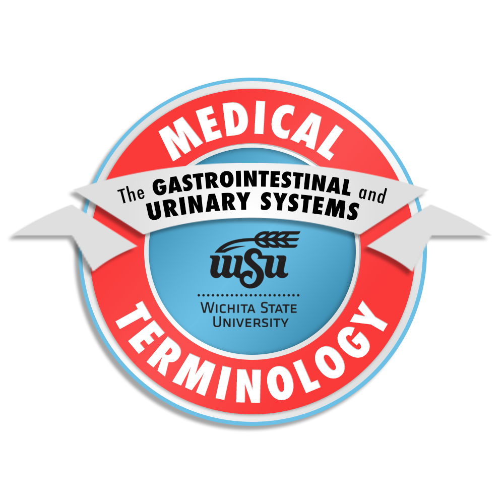 6_Medical Terminology_The Gastrointestinal and Urinary Systems
