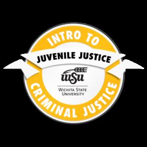 CRIMINAL JUSTICE_intro-JuvenileJustice